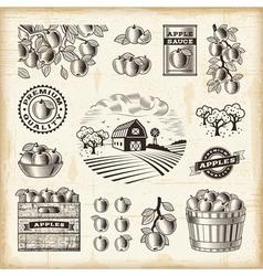 Vintage apple harvest set vector