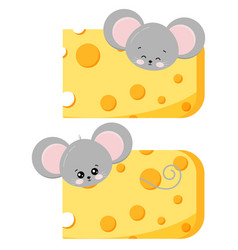 Cute mouse pick out cheese set isolated on vector