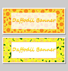 Daffodil banner template vector
