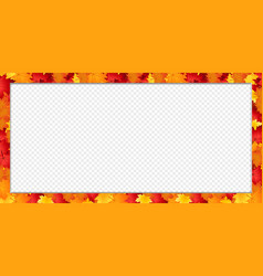 rectangle border banner with fallen autumn maple vector image