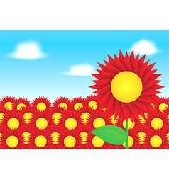 Red sun flower on blue sky background vector