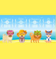Summer fashion puppy dog icon set in sweet retro vector