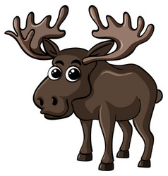Cute moose on white background vector