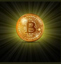 bitcoin golden coin vector image