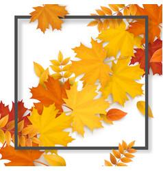 Frame autumn fallen leaves vector