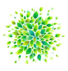 green leaves round cloud isolated on white vector image