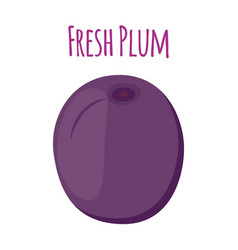 plum made in cartoon style vector image