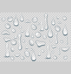 Set of pure clear drops of water on a transparent vector