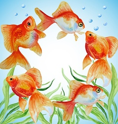 Watercolor frame with hand drawn goldfishes vector image