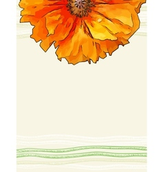 background with red poppy flower vector image