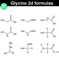 Glycine chemical structures different styles vector image