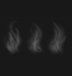 hot food steam collection vapor effects from vector image