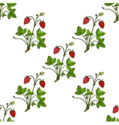 seamless pattern with garden strawberry vector image
