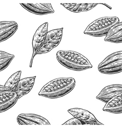 Seamless pattern with leaves and fruits of cocoa vector