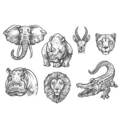sketch zoo wild african animals icons vector image
