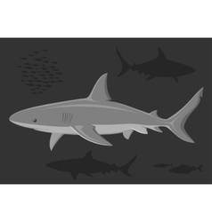 Sharks in the deep sea vector image