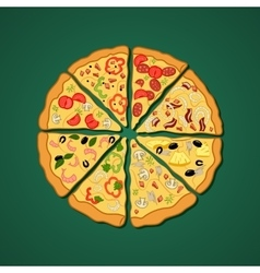 color image of a pizza vector image