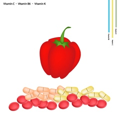 Red Bell Peppers with Vitamin C B6 and K vector image