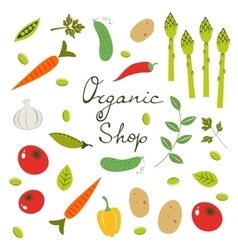 Colorful organic vegetables collection vector image vector image