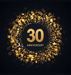 30 years anniversary isolated design vector image