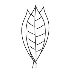 Bay leaves icon outline style vector