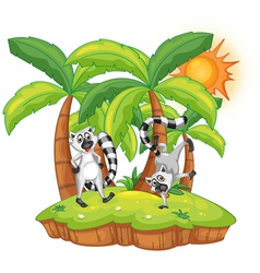 Cartoon Lemur island vector image vector image