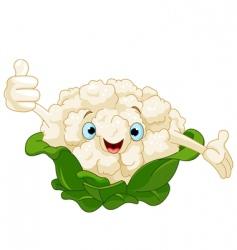 cauliflower character vector image