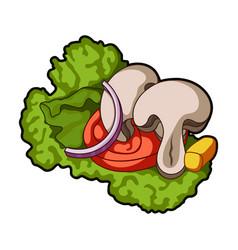 ecological vegetable saladsalad for vegetarians vector image