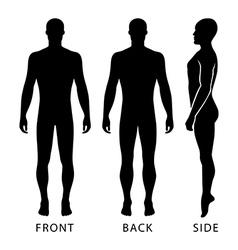 Fashion bald man full length template vector image