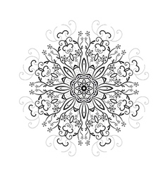 floral round pattern vector image