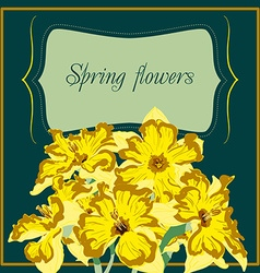 narcissus flower card element vector image