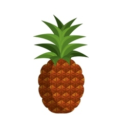 Pineapple fruit food vector