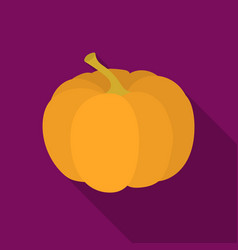 Pumpkin icon in flate style isolated on white vector