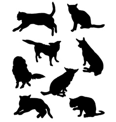 Collection of silhouettes of a cat and dog vector image vector image