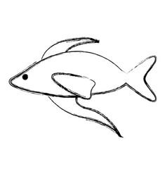 fish cartoon isolated vector image vector image