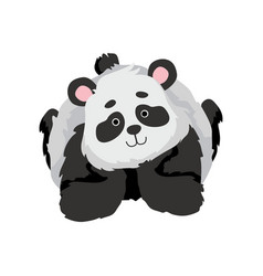 Cute baby panda bear funny lovely animal vector