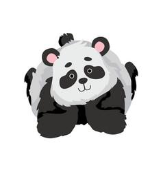 cute bapanda bear funny lovely animal vector image