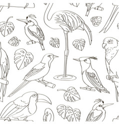 Exotic birds pattern vector