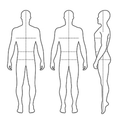 Fashion bald man full length outlined template vector