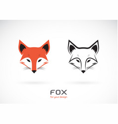 fox head design on white background wild animals vector image