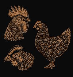 set rooster chicken in engraving style vector image