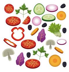 salad vegetables food diet healthy vector image vector image