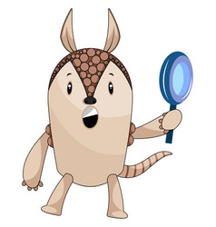 armadillo holding magnifying tool on white vector image