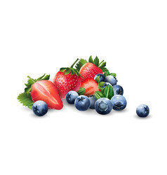 Blueberries and strawberries vector