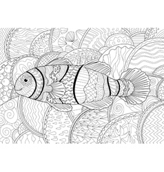 Clownfish with high details vector image vector image
