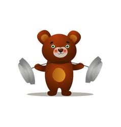 cute brown siberian bear lift up metal barbell vector image