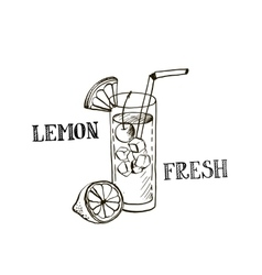 hand drawn lemonad in glass vector image