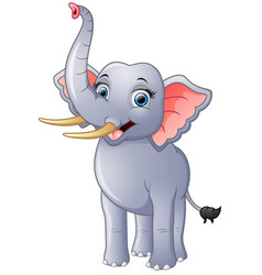 happy elephant cartoon isolated vector image