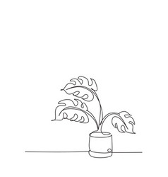 one single line drawing monstera leaf in pot vector image