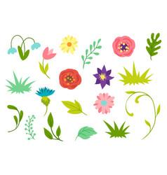 set spring flowers beautiful decorative vector image